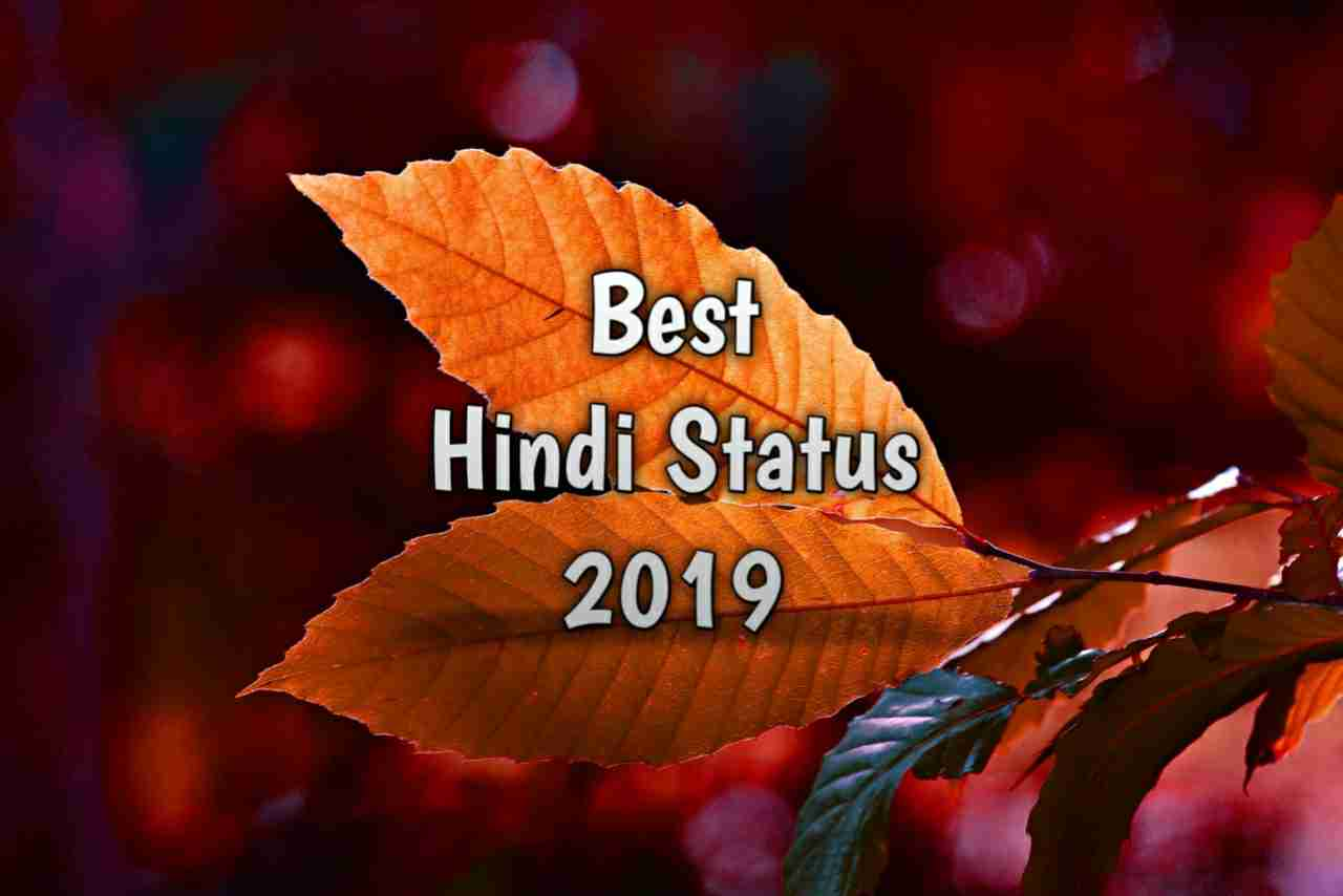 Photo of Hindi Status