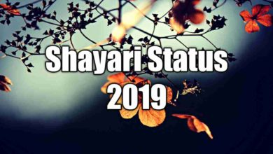 Photo of Shayari Status