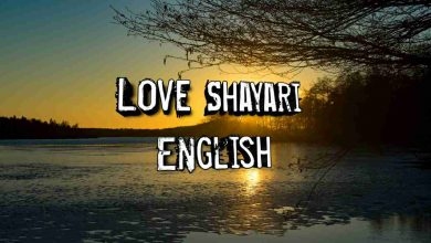 Photo of Love shayari in English
