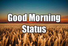 Photo of Good Morning Status