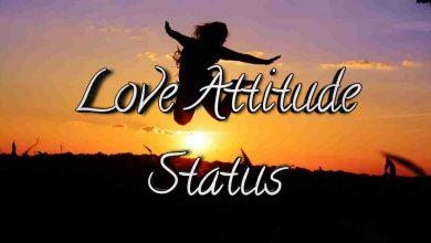 Love Attitude Status