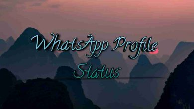 WhatsApp Profile Status
