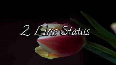 Photo of 2 Line Status