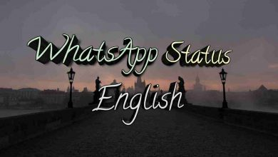 Photo of WhatsApp status in English