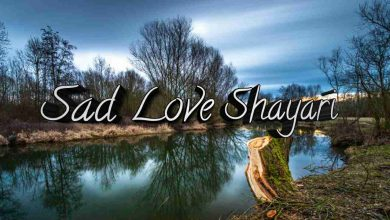 Photo of Sad love Shayari