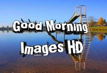 Photo of Good Morning Images