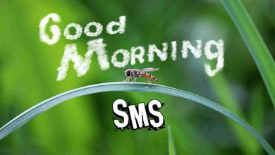 Photo of Good Morning SMS