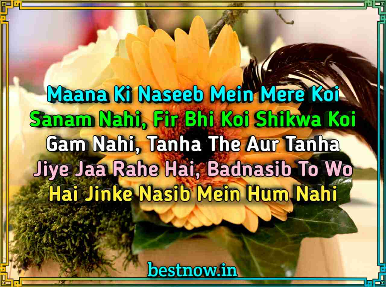 English Shayari