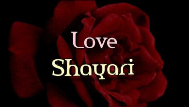 Photo of Love Shayari
