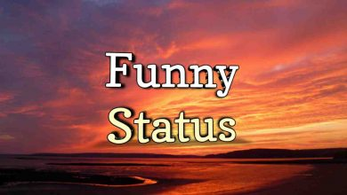 Photo of Funny Status